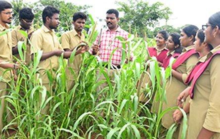 Faculties | Vanavarayar Institute Of Agriculture